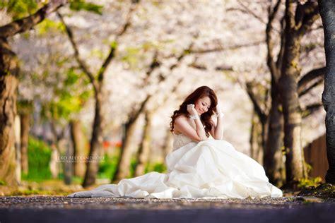 strobist cherry blossoms wedding shot setup