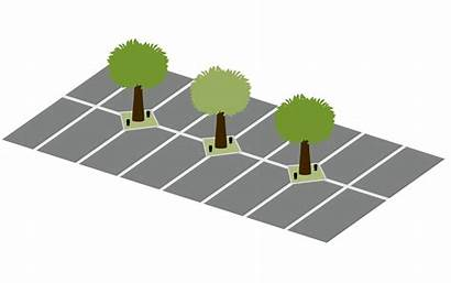 Drip Deep Parkinglot Illustrations Applications Agricultural Watering