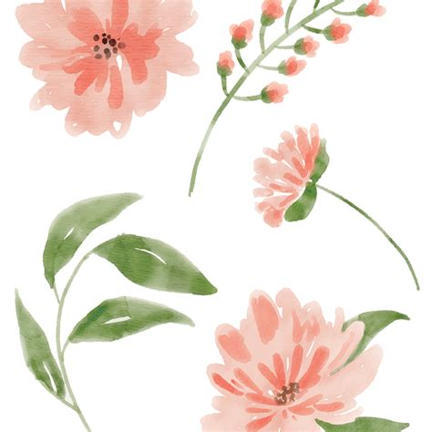 watercolor flower images peach delight