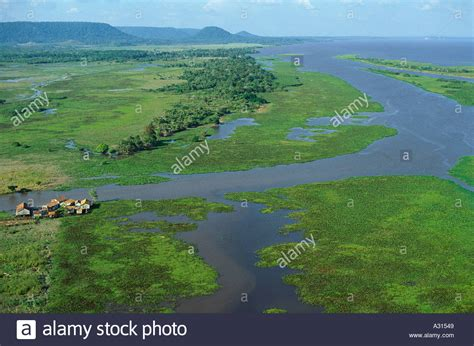 aerial view   amazon floodplain   water level