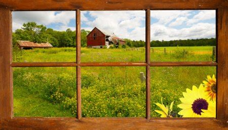 summer country view  window stock photo