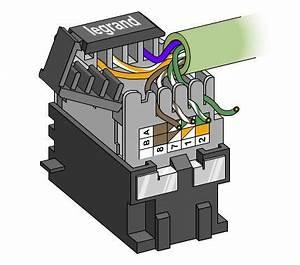 Branchement Prise Rj45 Legrand : montage prises rj45 legrand mosa c cat 6 ~ Dailycaller-alerts.com Idées de Décoration