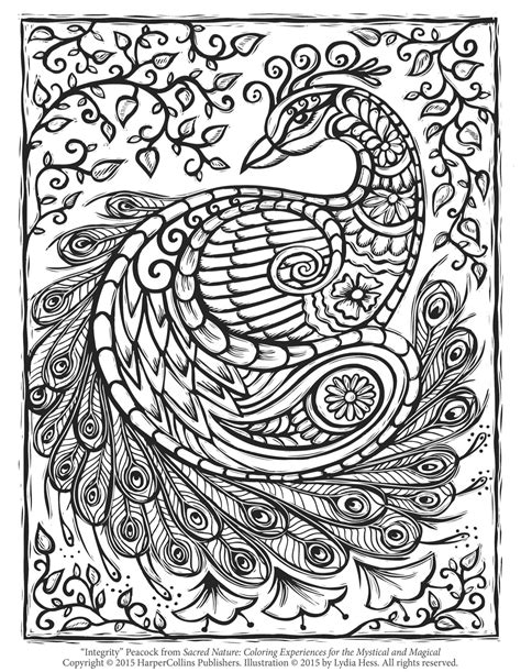 peacock coloring pages for adults free peacock coloring page crochet