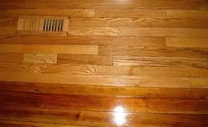 termite damage on wood floors carpet vidalondon With termite damage to hardwood floors