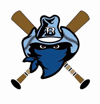 Bandits Baseball Gwinnett 10u 12u Teams Team