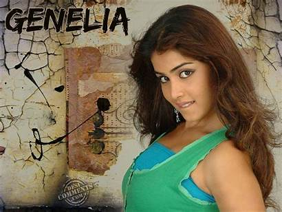 Genelia Beauty Indian Wallpapers Souza Desicomments Bollywood