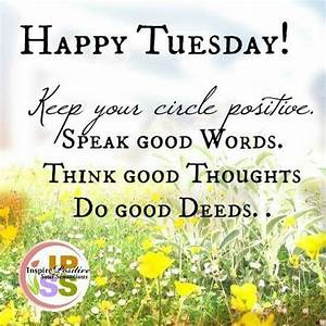 25+ best Happy Tuesday Quotes on Pinterest | Happy tuesday ...