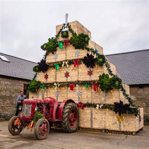 christmas treed with a difference a tree with a difference to celebrate harvest 2016 agriland