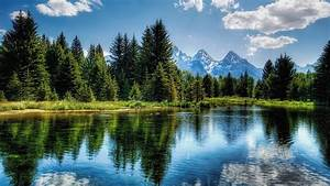 Beautiful, Lake, In, The, Mountains, Surrounded, By, Pine, Trees