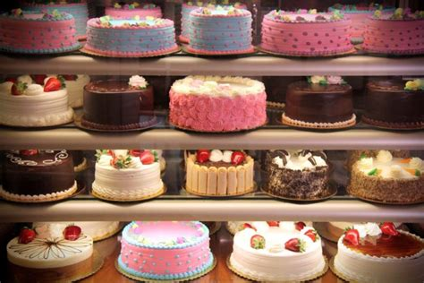 How To Start A Cake Decorating Business. Office Decor Ideas. Decorative Cutting Boards. Cake Decorating Classes In Ct. Living Room Rugs Amazon. Santa Sleigh Yard Decoration. Metal Turtle Wall Decor. Rooms For Rent Melbourne Fl. Room Decor Colors