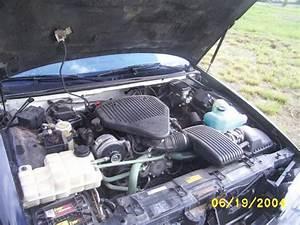 okiebowtie 1994 Chevrolet Caprice Specs, Photos