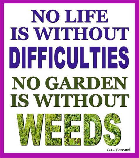 garden quotes july garden quotes quotesgram