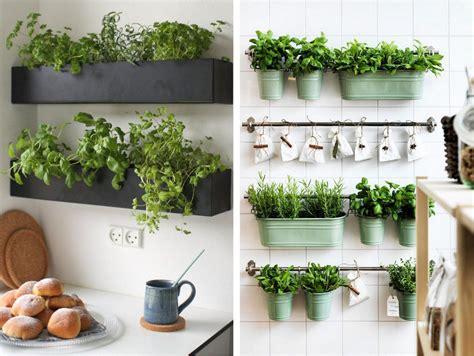decoration murale plante faire une decoration murale avec des plantes design en image