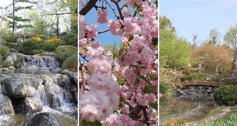 Japanische Gärten In Wien by Fern 246 Stliche Gartenkunst Mitten In Wien Vienna At
