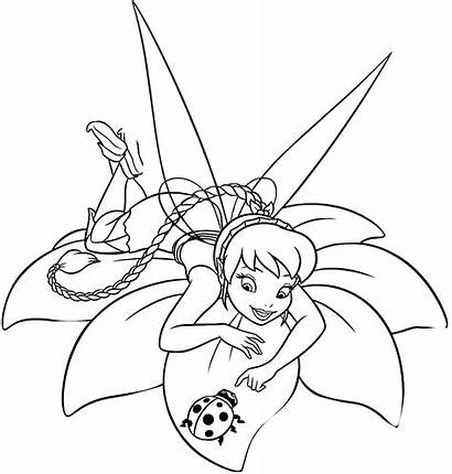 Coloring Pages Tinkerbell Fairy Fawn Neverbeast Talent