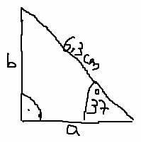 Fehlende Größen Im Dreieck Berechnen : trigonometrie trigonometrie rechtwinkliges dreieck seitenl ngen a und b berechnen mathelounge ~ Themetempest.com Abrechnung