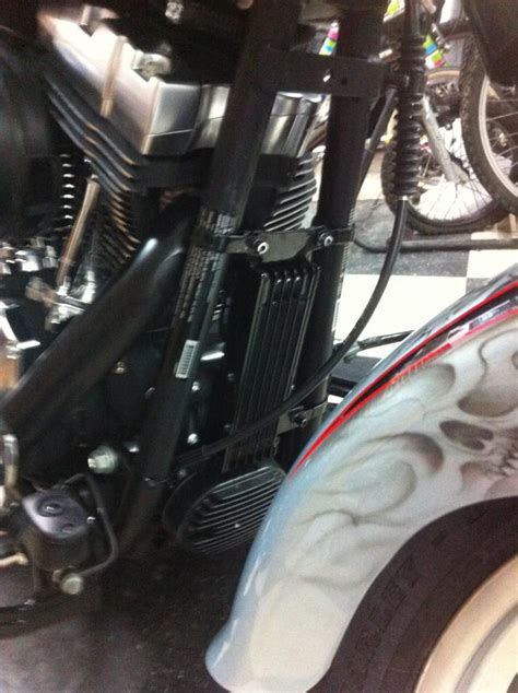 hd softail oil cooler page  harley davidson forums