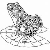 Coloring Frogs Children Justcolor sketch template