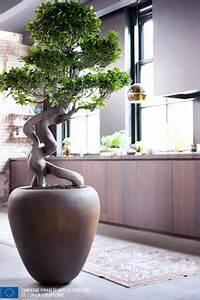 Plante Interieur Haute : le pouvoir des fleurs plantes ~ Teatrodelosmanantiales.com Idées de Décoration