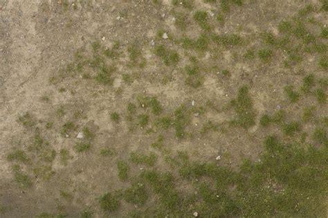 grass  background texture grass sand gradient