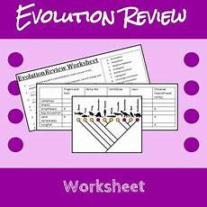 Evolution Review Worksheet By Erin Frankson  Teachers Pay