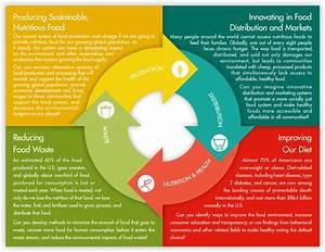 Harvard Deans U0026 39  Food System Challenge