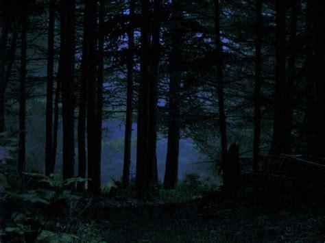 Pixel Art Landscape Wallpaper Night In The Woods By Deniz Dutton