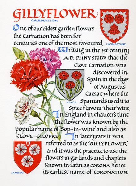 flowers  heraldry compiled designed written