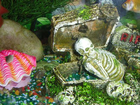 restaurant le bureau nimes tropical fish tank decorations 28 images florida