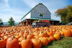 Basses Pumpkin Farm looking for a pumpkin farm oak creek wi patch
