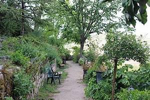 le jardin d39eden a hillside garden in tournon sur rhone With jardin eden