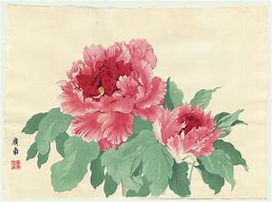 Related Keywords & Suggestions for japanese peonies