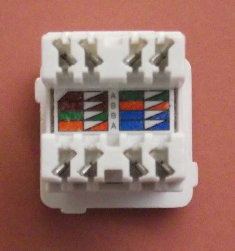 terminating cate cable   jack wall mount  patch panel