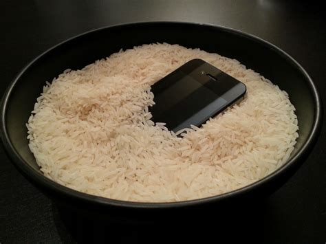 iphone in rice dansooley 187 cure for the common phone
