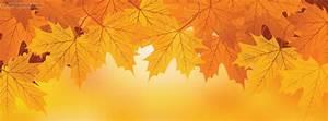 Autumn Fall Leaves Orange Facebook Cover, Autumn Fall ...