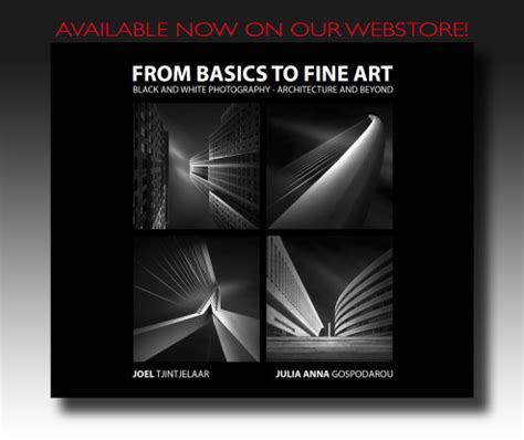 book  basics  fine art   bwvision