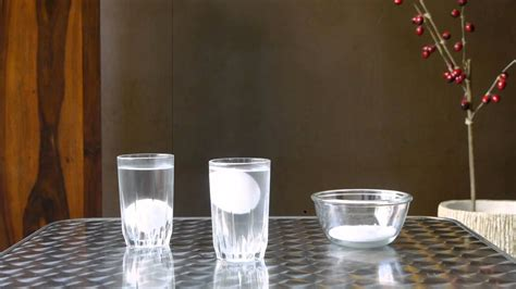 egg floating  water cool science experiment mocomi