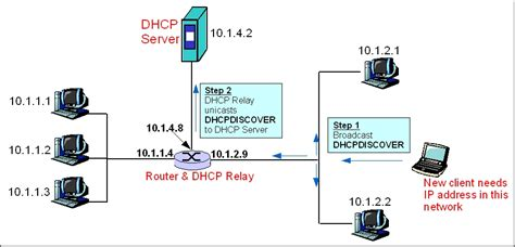 Communication Networks/dhcp Protocol
