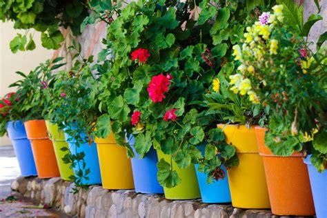 pot de fleur pas cher choix de pots de fleur pas cher ooreka