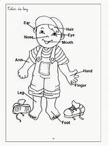 Coloring Pages Parts Human Systems Popular sketch template