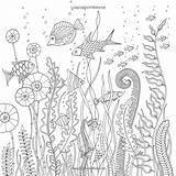 Coloring Lost Ocean Johanna Basford Adult Adultos Besuchen Credit Larger Trycoloring Books Hellboyfull Gemerkt Colorear sketch template