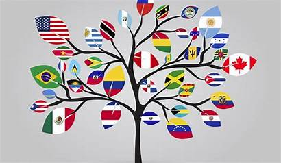 International Flags Tree American Cultures Students Student