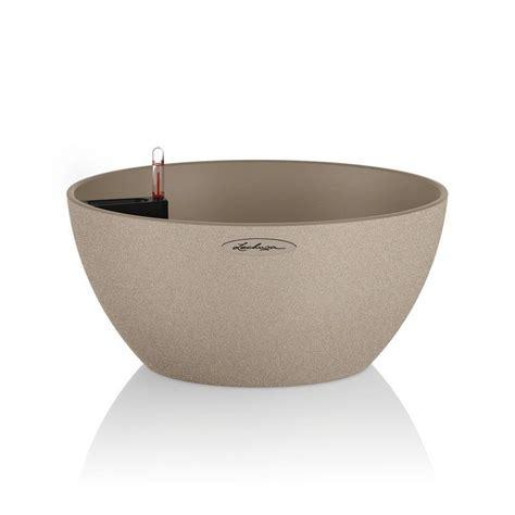 lechuza vasi vaso cubeto 40 lechuza set completo