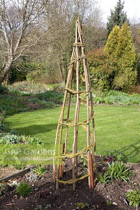 Gap Gardens  Obelisk For Climbing Plants Hazel Verticals