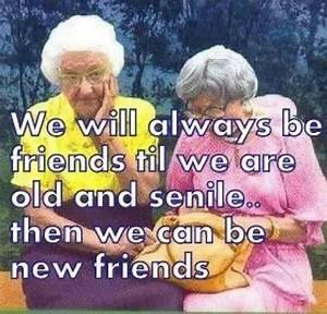 Funny Best Friend Quotes & Sayings   Funny Best Friend ...