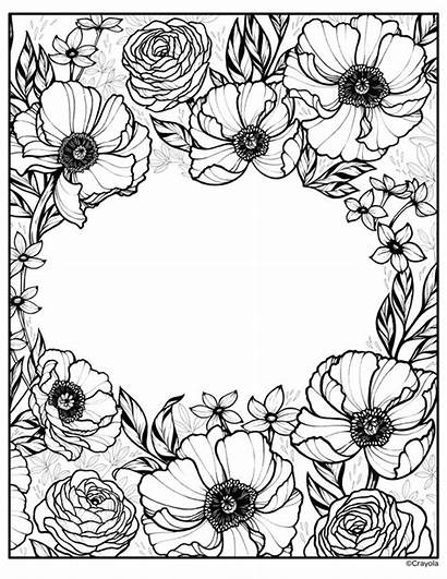 Flowers Rose Coloring Blooming Crayola