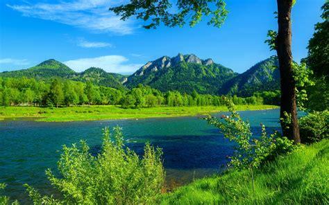 river dunajec poland summer landscape mountains