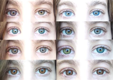 eye contact color freshlook colorblend contacts colorful
