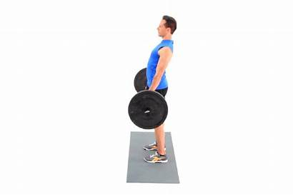 Deadlift Romanian Stiff Barbell Exercise Form Gym