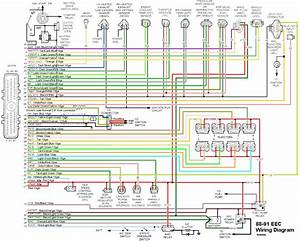 Brain Box For Ford Wiring Diagrams